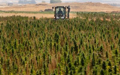 Мы за развитие отраслей народного хозяйства